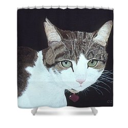 Best Cat Shower Curtain