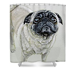 Shower Curtain featuring the painting Best Friend by Jimmie Bartlett