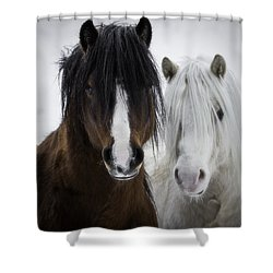 Best Friends II Shower Curtain by Everet Regal
