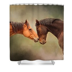 Best Friends - Two Horses Shower Curtain