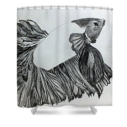 Betta Sketch Shower Curtain