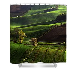 Shower Curtain featuring the photograph Between Green Waves by Jenny Rainbow