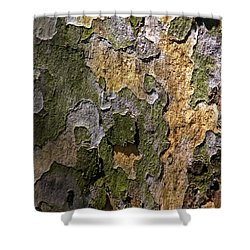 Shower Curtain featuring the photograph Between Light And Shadow by Lynda Lehmann