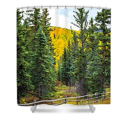 Between Pines Shower Curtain