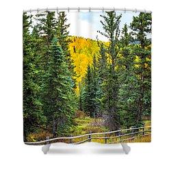 Between Pines Shower Curtain