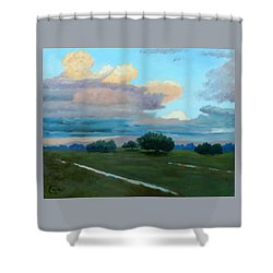 Shower Curtain featuring the painting Between Rains by Gary Coleman
