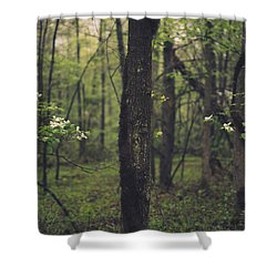 Between The Dogwoods Shower Curtain