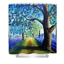 Between The Lavender Fields Shower Curtain