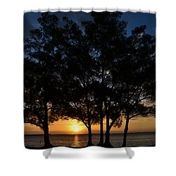 Shower Curtain featuring the photograph Between The Trees by Melanie Moraga