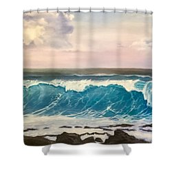 Between The Turtle And The Shark Shower Curtain