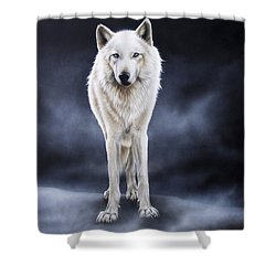 'between The White And The Black' Shower Curtain by Sandi Baker