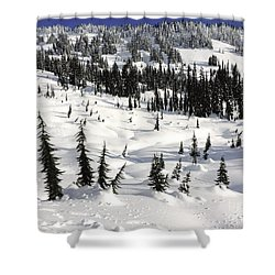 Beyond Paradise Shower Curtain