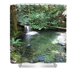Shower Curtain featuring the photograph Beyond The End Of The Trail At Limpy Creek by Marie Neder