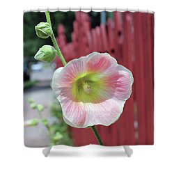 Beyond The Garden Fence Shower Curtain