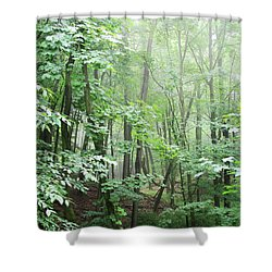 Beyond The Misty Forest Shower Curtain