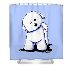 Bichon Boy Shower Curtain