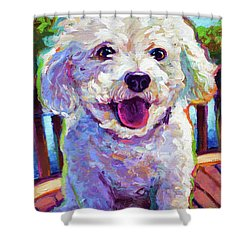 Shower Curtain featuring the painting Bichon Frise by Robert Phelps
