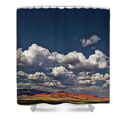 Biclnell Bottoms Shower Curtain