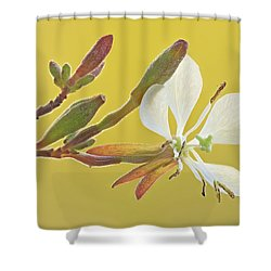 Biennial Gaura Shower Curtain
