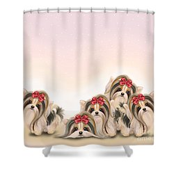 Biewer Pack Shower Curtain