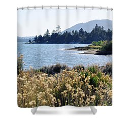Big Bear Lake Shoreline Shower Curtain
