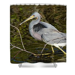 Big Bird Little Stick Shower Curtain