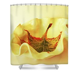 Shower Curtain featuring the photograph Big Bowl1 by Itzhak Richter