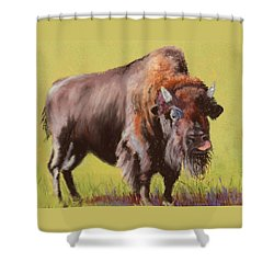 Shower Curtain featuring the painting Big Boy by Nancy Jolley
