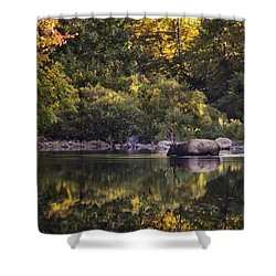 Big Bull In Buffalo National River Fall Color Shower Curtain by Michael Dougherty