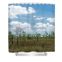 Shower Curtain featuring the photograph Big Cypress Marshes by Jon Glaser