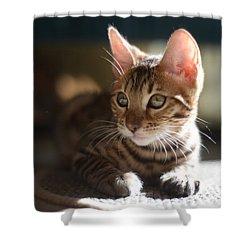 Big Ears Shower Curtain