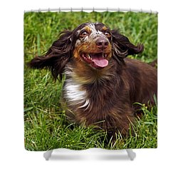 Big Ears Shower Curtain by Sally Weigand