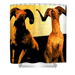Big Game Canada - Fannin Sheep Shower Curtain