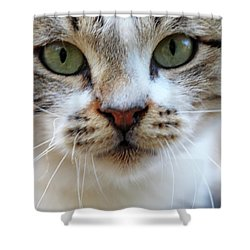 Shower Curtain featuring the photograph Big Green Eyes by Munir Alawi
