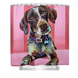 Big Hank, The German Short-haired Pointer Shower Curtain