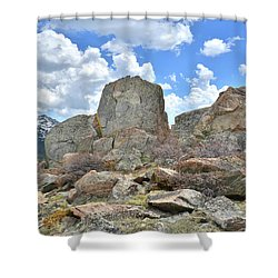 Big Horn Mountains In Wyoming Shower Curtain