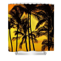 Big Island, View Shower Curtain by Greg Vaughn - Printscapes