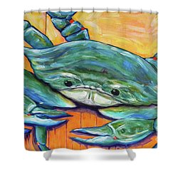 Big Jimmie Shower Curtain