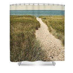 Shower Curtain featuring the photograph Big Lake Beach Path by Michelle Calkins