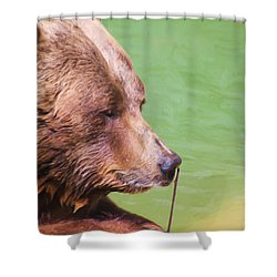 Big Old Bear With A Tiny Stick Shower Curtain by Karol Livote