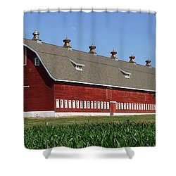 Big Red Barn In Spring Shower Curtain