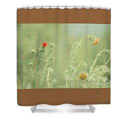Big Red, Little Red Shower Curtain