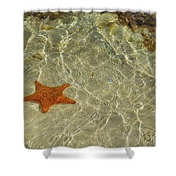 Big Red Star Shower Curtain
