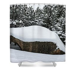 Big Rock - 0623 Shower Curtain