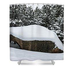 Big Rock - 0623 Shower Curtain