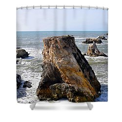 Shower Curtain featuring the photograph Big Rocks In Grey Water by Barbara Snyder