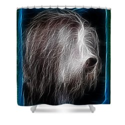 Shower Curtain featuring the photograph Big Shaggy Dog by EricaMaxine  Price