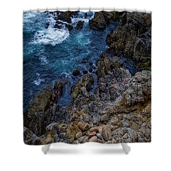 Big Sur #2 Shower Curtain