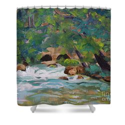 Big Spring On The Current River Shower Curtain by Jan Bennicoff