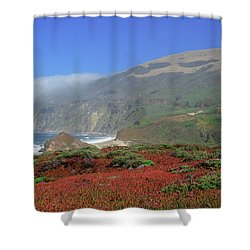Big Sur 4 Shower Curtain